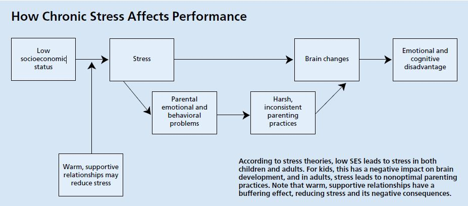 Economic Stress Linked To Poor Brain >> Why Do Rich Kids Do Better In School Than Poor Kids Daniel